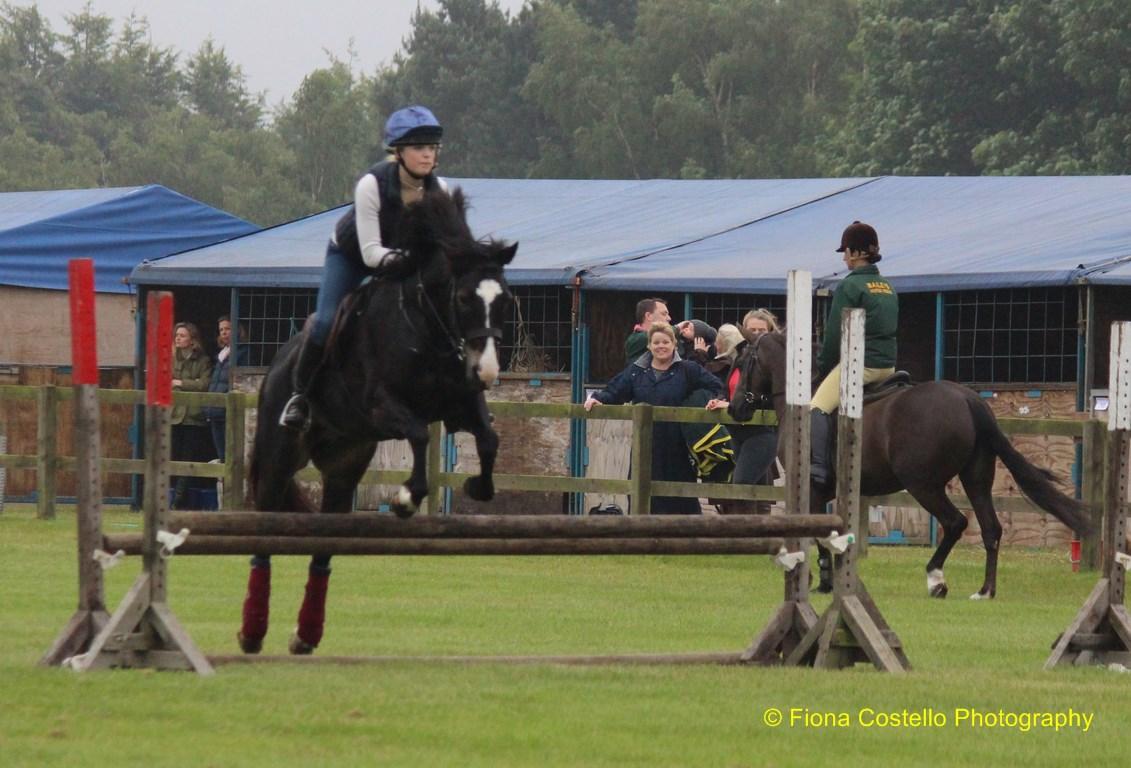 horse-suffolkshow