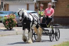 horse&carriage-peldon