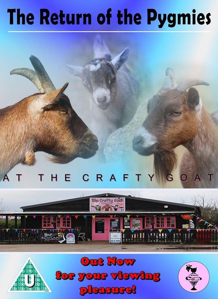 crafty-goat-promotion