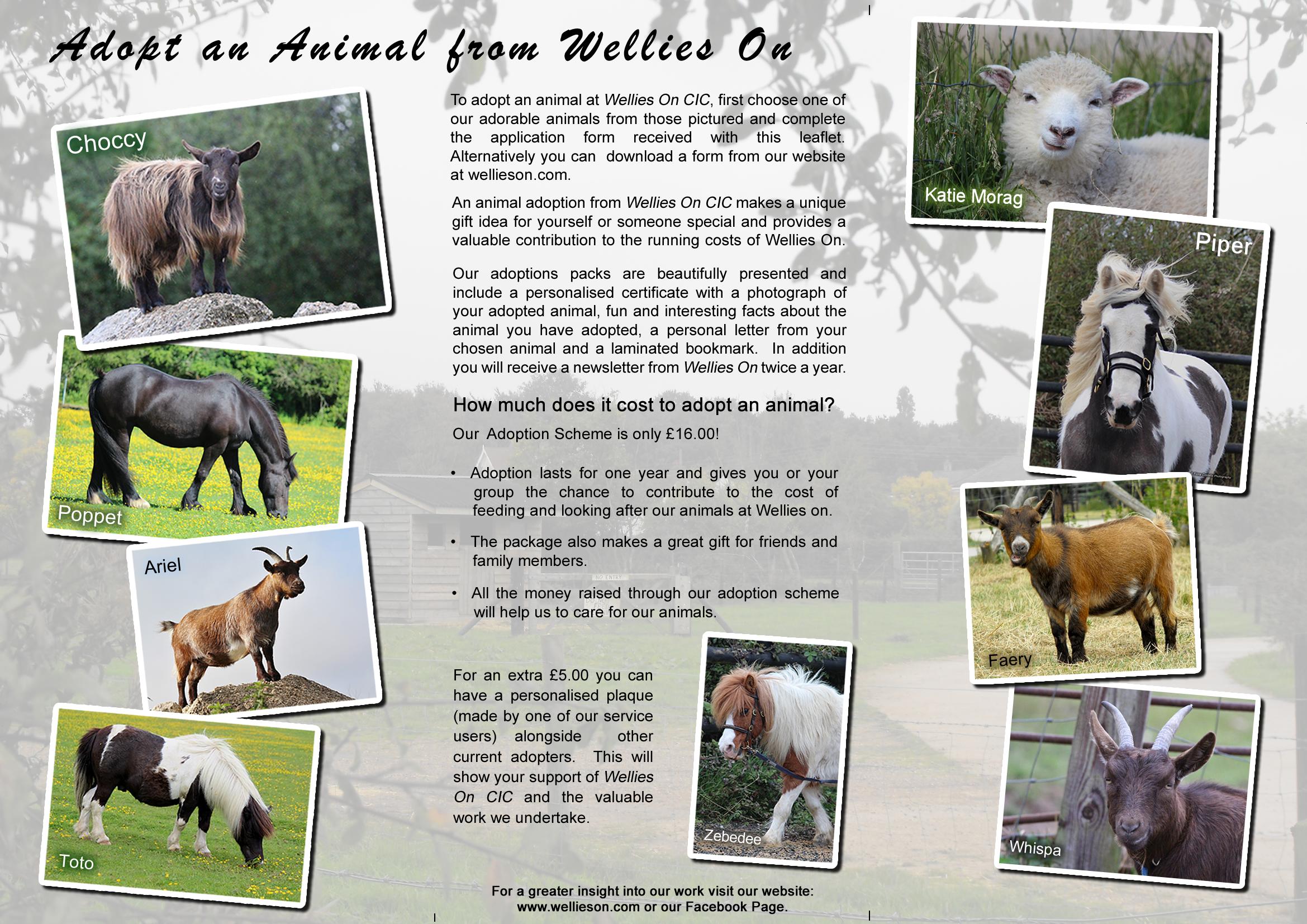 adoption-leaflet-pg2