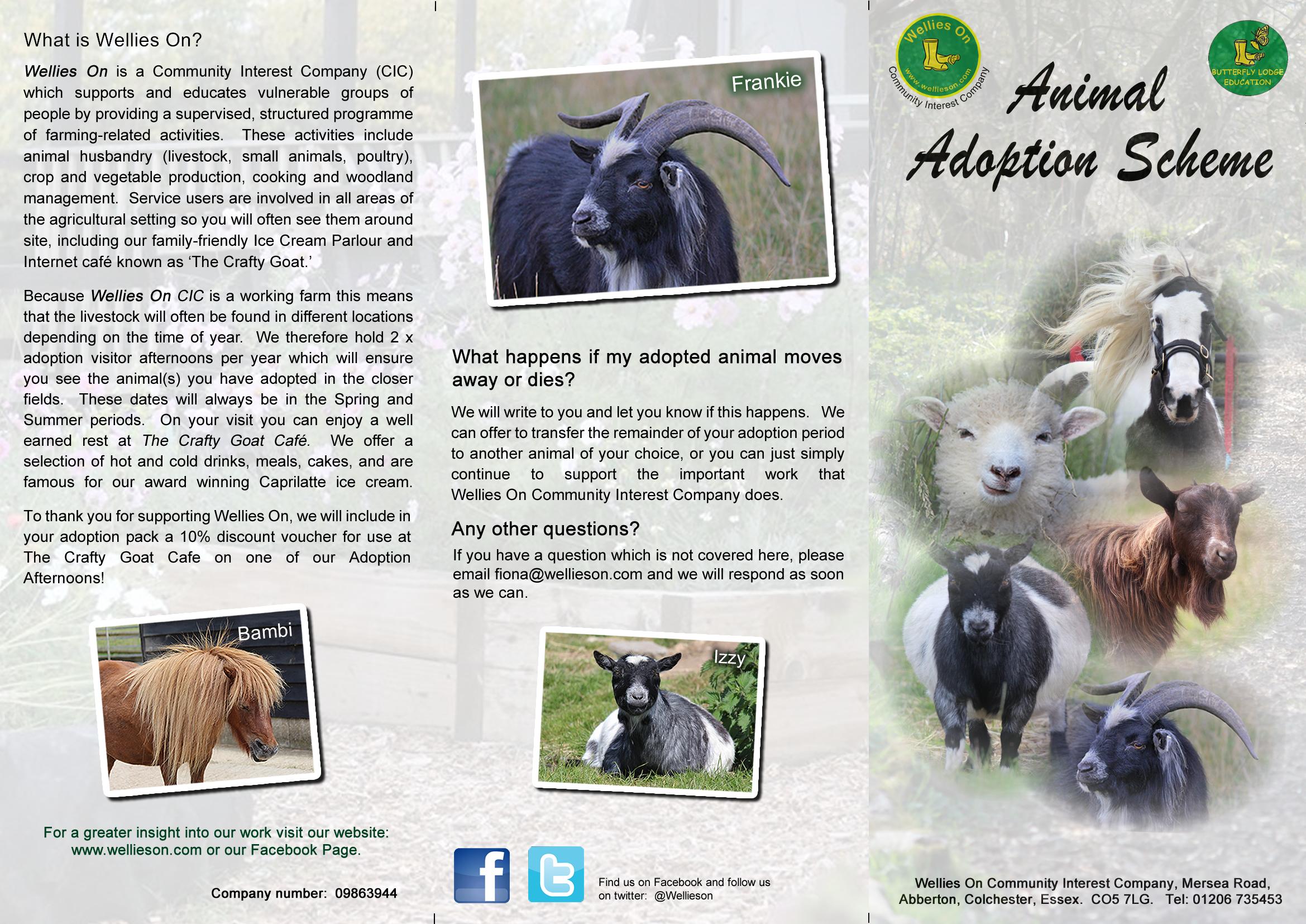 adoption-leaflet