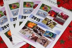 calendar-fiona-costello